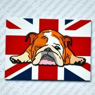 English Bully liegend - Union Jack