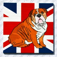 Sitzender English Bully - Union Jack