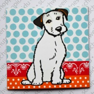White Jack Russel Terrier - Big Polka