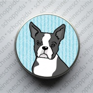Minidose - Boston Terrier