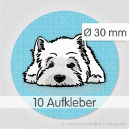 West Highland Terrier blau